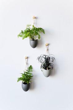 Asche Porzellan und Baumwoll Seil hängenden von lightandladder