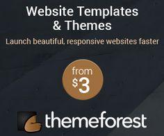 En venta plugins, temas o plantillas para páginas web. Haz click en la imagen