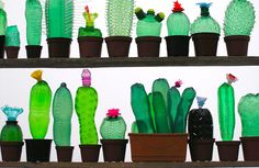 Artist Veronika Richterová turns plastic bottles into beautiful plant and animal sculptures