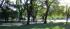 Combina Tudo - O Blog que é Sua Cara: Parque Buenos Aires - Centro de Sampa
