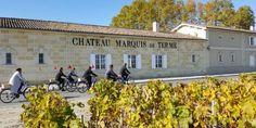 Cyclists at Marquis de Terme, Margaux, Bordeaux