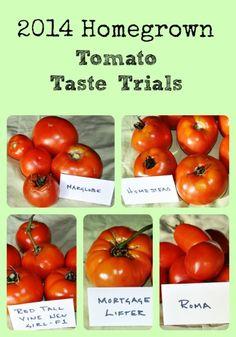 2014 Tomato Taste Trials via Better Hens and Gardens