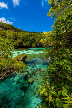 Natural Aquarium, Island of Mare, Loyalty Islands, New Caledonia - Beautiful Places To Travel, Wonderful Places, Dream Vacations, Vacation Spots, Cruise Travel, Places Around The World, Landscape Photos, Travel Around, Land Scape