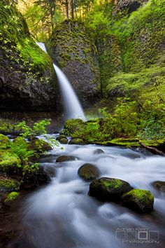 Ponylight - Columbia River Gorge, Oregon by Adrian**