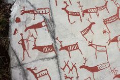 Norwegian rock art, Alta Fjord. Here we can see a male hunter with a bow and arrow, reindeer (shown with forward projecting antlers) and their young, deer, elk (shown with heavier neck and head), and a fishing net.