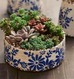 Old world set of 2 different shaped blue and white floral ceramic pots - Succulents wedding Terrarium succulentes Succulent Gardening, Succulent Care, Cacti And Succulents, Succulent Terrarium, Planting Succulents, Terrarium Wedding, Ceramic Flower Pots, Ceramic Pots, Cactus Ceramic