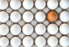 How To Tell If Your Eggs Have Gone Bad