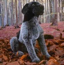 Kosen make very realistic soft toys, this German Wirehaired Pointer is no exception. He is made of a lovely soft black plush which has heavy white tipping on parts of his body to give the colour differences. German Wirehaired Pointer, Mans Best Friend, Pointers, Doggies, Cute Animals, Toy, Puppies, Colour, Black And White