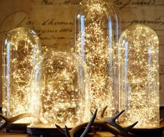 .these lights can be purchased at restoration hardware