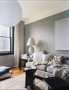 paint color: light gray