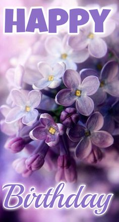 Lilac – the spring – color-type bloom! Lilac (color pass numbers Kerstin Tomancok Color, type, style & image consultation - All About Lilac Flowers, My Flower, Beautiful Flowers, Spring Flowers, Beautiful Things, Bloom, Lilac Blossom, Spring Blossom, Deco Floral