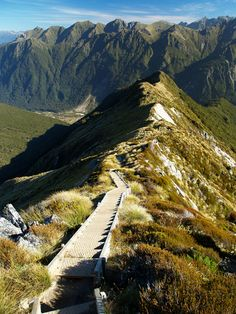 Kepler Track, New Zealand - fantastic views. Did this years ago, I distinctly remember the spiraling, seemingly never ending downward climb - hell for knees.