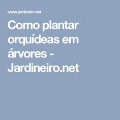 Como plantar orquídeas em árvores - Jardineiro.net