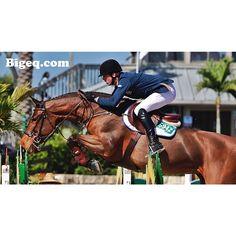 Love the bascule & form of this horse's jump! #bigeq #hunterjumper
