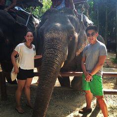 Siam safari treat their animals in a fair and ethical way #siamsafari #phuket #thailand #elephanttrek by misshannahhuang