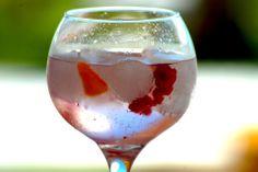 Los mejores Gin Tonics!