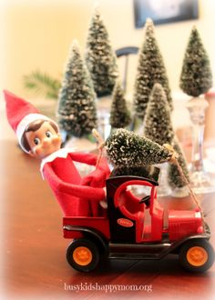 Busy Kids Happy Mom: By Kristen 25 Ideas for Christmas Fun with your Elf-on-the-Shelf! He found the perfect Christmas tree! Christmas Activities, Christmas Traditions, Elf Auf Dem Regal, Elf Magic, Elf On The Self, Naughty Elf, Buddy The Elf, Tree Shop, Happy Mom