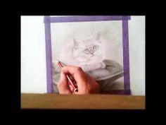 ▶ Speed Drawing of Cute Fluffy Kitten in Pencil! - YouTube