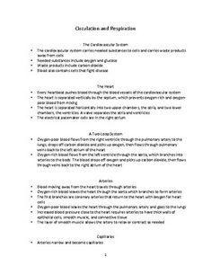 Nurse RN Resume Sample Download This Resume Sample To