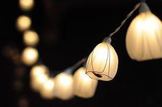 20 white tulip hanging lantern string light wedding by cottonlight, $15.50