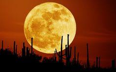 Supermoon sering juga disebut Beaver Moon atau Frost Moon. Kali ini, fenomena Supermoon bertepatan dengan bulan purnama. Kemunculannya akan membuat bulan purnama memiliki diameter sudut sekitar 7 persen lebih besar dari rata-rata.