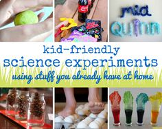 6 Science Experiment