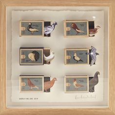 Framed Pigeon Collage by Andrew Malone