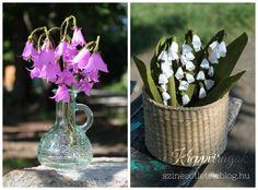 A legegyszerűbb krepp-papírból néhány fogás elsajátításával teljesen élethű virágokat készíthetünk. Az alábbi részletes leírások és fázisfotók alapján bárki bátran nekifoghat egy-egy csokor összeállításának. Sorozatunk első részében virágzó cseresznyefaágat és bűbájos margarétákat készíthettetek, a…