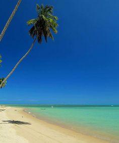 Praia de Maragogi Alagoas Ƹ̵̡Ӝ̵̨̄Ʒ • Må®¢ë££å™ • Ƹ̵̡Ӝ̵̨̄Ʒ