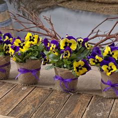 Pansies are a great supply in the kitchen and the craft room and can be made into all sorts of pansy crafts, from delectable donuts to homemade bath bombs. Party Centerpieces, Flower Centerpieces, Table Decorations, Homemade Bath Bombs, Large Flowers, Exotic Flowers, Purple Flowers, Arte Floral, Baby Shower