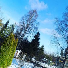 Snow's melting, sky is blue. Time to let the green in, Spring is in the air up in Finland! #spring #goodbyewinter #hellospring #sunny #weather #karjaa #bluesky #outdoors #gooutside #finland #bild #foto #instalikes #herecomesthesun #trees #garden #thisisfinland #igers #igersfinland #feelgood #feelinggood #happyday #photo