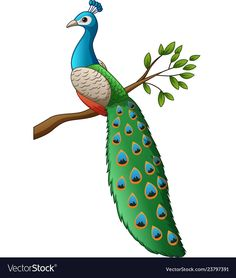 Cartoon cute peacock on a branch vector image on VectorStock Drawing Lessons For Kids, Art Drawings For Kids, Cartoon Drawings, Easy Drawings, Peacock Drawing, Peacock Wall Art, Butterfly Painting, Cute Cartoon Boy, Lotus Flower Art