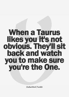 Afbeeldingsresultaat voor taurus sayings quotes Taurus Quotes, Zodiac Quotes, Zodiac Facts, Quotes Quotes, Taurus Memes, Crush Quotes, Lyric Quotes, Astrology Taurus, Zodiac Signs Taurus