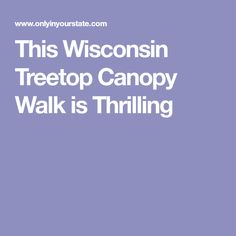 This Wisconsin Treetop Canopy Walk is Thrilling
