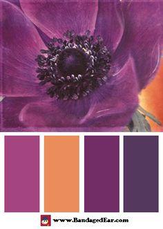 Purple Color Palette: Purple Anemones II, Art Print by Amy Melious