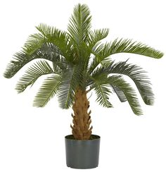 Cycas Artificial Silk Plant with Nursery Planter | 28 inches