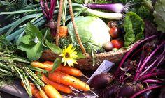 Garden Harvest...May 21, 2015