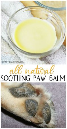All Natural Soothing Paw Balm for Dogs- dog cracked paws in summer time. Dog paw pad balm to make. Recipe beeswax etc. All Natural Soothing Paw Balm for Dogs- dog cracked paws in summer time. Dog paw pad balm to make. Recipe beeswax etc. Dog Paw Pads, Pet Paws, Dry Dog Paws, Dog Treat Recipes, Dog Food Recipes, Dog Biscuit Recipes, Dog Paw Cream, Diy Pour Chien, Homemade Dog Food