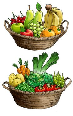 Art Drawings For Kids, Drawing For Kids, Fruit And Veg, Fruits And Vegetables, Olivers Vegetables, Basket Drawing, Food Clipart, Fruit Art, Food Illustrations