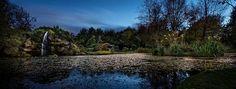 The Night Garden by Tony Moore Night Garden, Irish Art, Belfast, Contemporary Paintings, Art Photography, Art Gallery, Villa, Fine Art, Landscapes