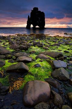 Hvitserkur, an animal shaped petrified lava-rock formation in the north of Iceland (Island),