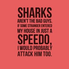 Sharks aren't the bad guys. If some stranger entered my house in just a Speedo, I would probably attack him too.   Share Inspire Quotes - Inspiring Quotes   Love Quotes   Funny Quotes   Quotes about Life