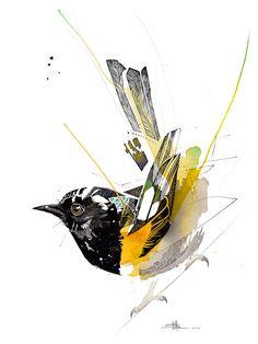 Rachel Walker — Black Ink Hihi Watercolor Paintings Abstract, Watercolor Trees, Watercolor Landscape, Watercolors, Watercolor Portraits, Bird Drawings, Animal Drawings, Rachel Walker, Street Art