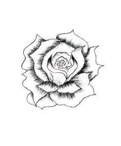 rose drawings pencil step drawing roses draw hearts heart easy flower flowers sketches clipart gothic line lighter steps epic buzzle