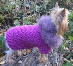Handmade Dog Clothing, Pet Fashion, Pet Dog Lover Gift, Sweatshirt Dog Hoodie…