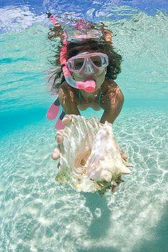 Sand, seashells, and snorkeling