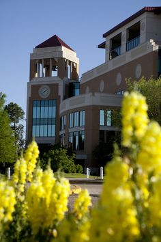 University of Louisiana - Monroe, Louisiana