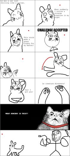Rage Comics: Why master?!