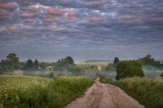 Владимирская область Владимирская область, Россия, фотография, Природа, пейзаж, лето, длиннопост