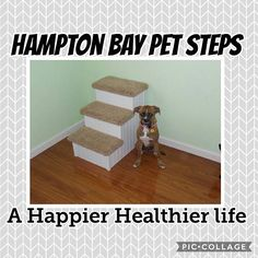 Pet Stairs Dog Stairs Pet Steps for Dogs 24 High